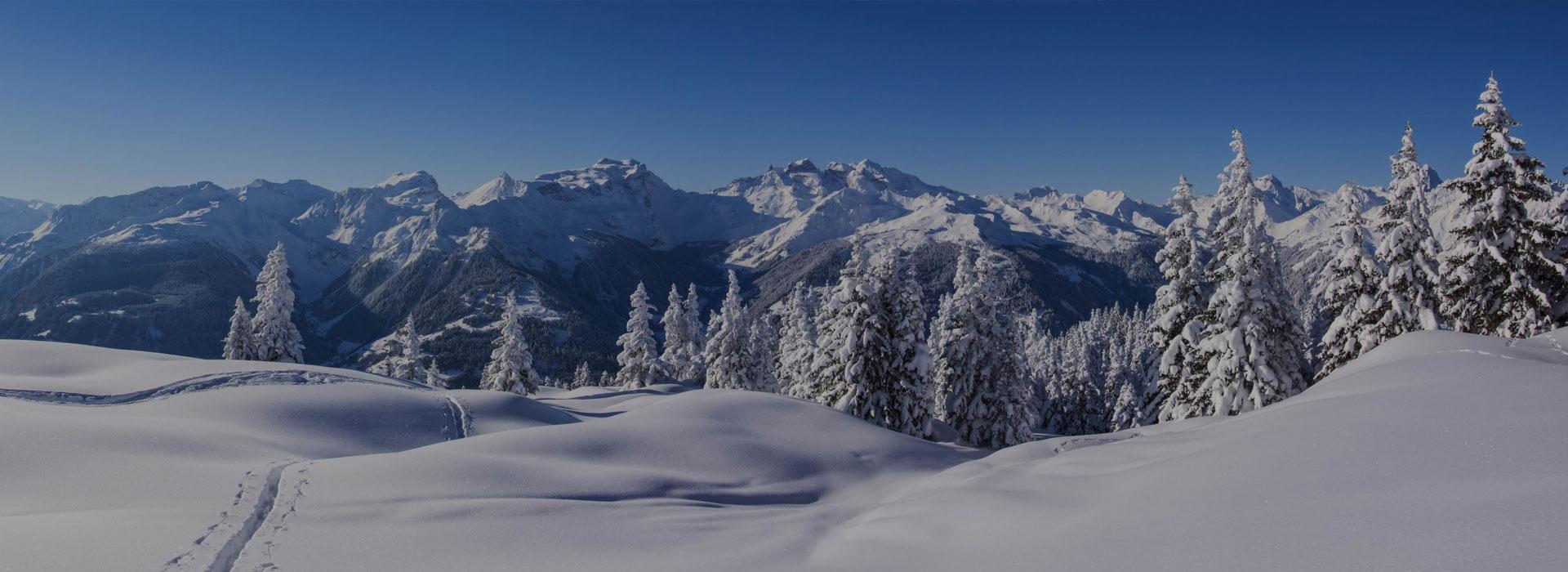 Équipements de ski
